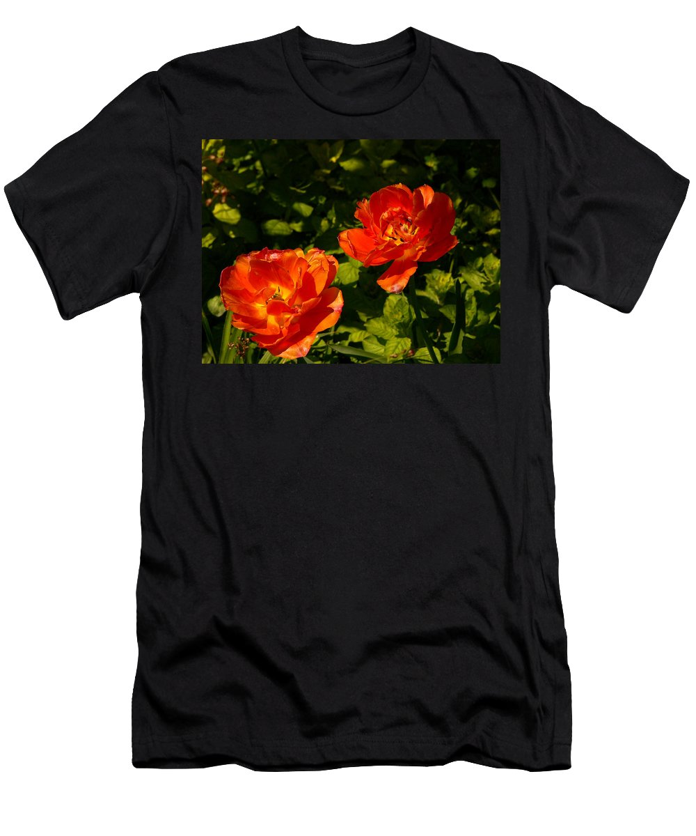 'orange Tulips' Men's T-Shirt (Athletic Fit) featuring the photograph Orange Tulips In My Garden by Helmut Rottler