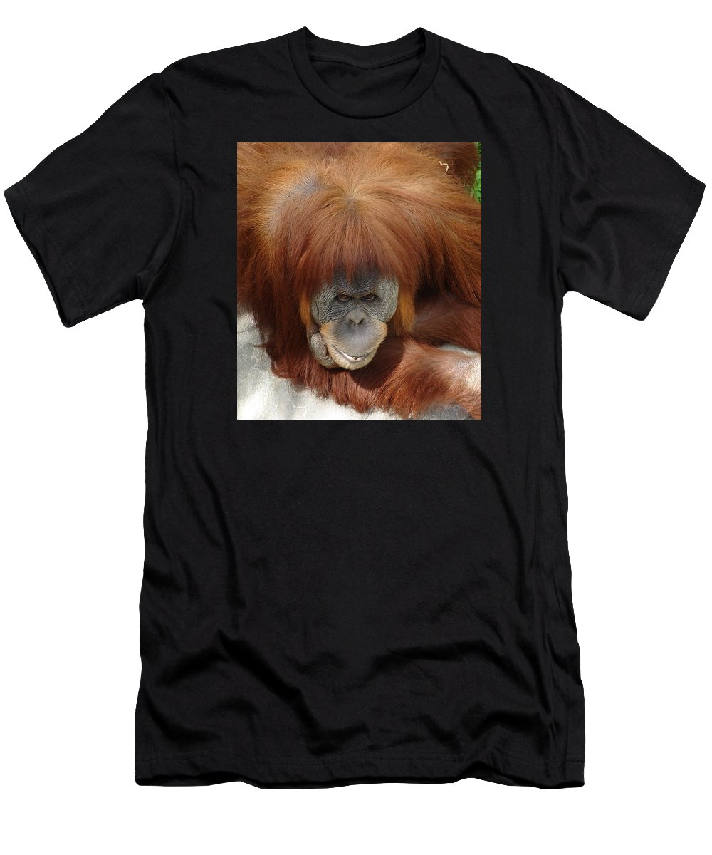 Red Ape Eyes Men's T-Shirt (Athletic Fit) featuring the photograph Orangutan by Luciana Seymour