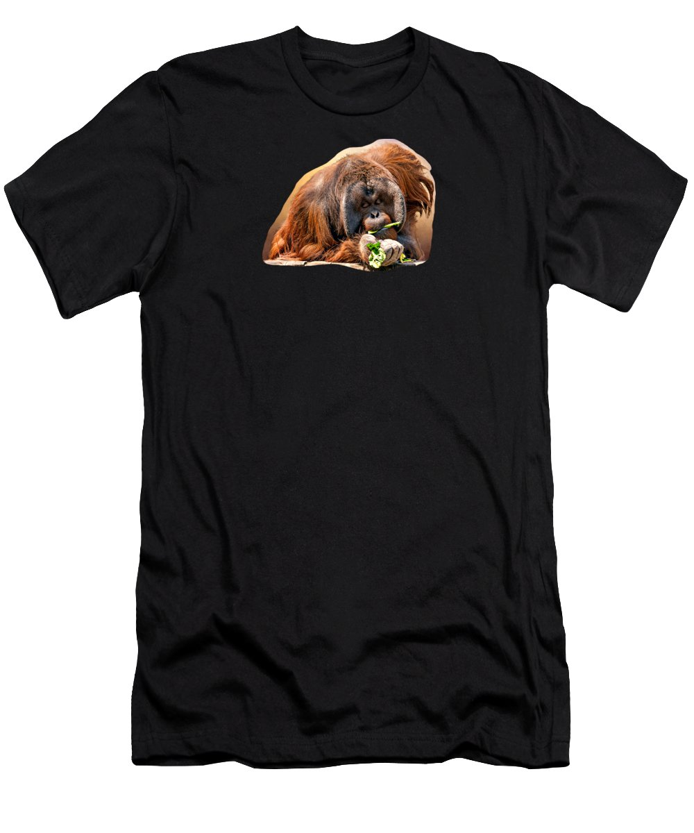 Animal Men's T-Shirt (Athletic Fit) featuring the photograph Orangutan by Maria Coulson