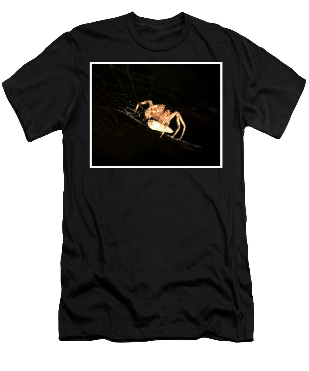 Spider Men's T-Shirt (Athletic Fit) featuring the photograph Orb Spider by Anthony Jones