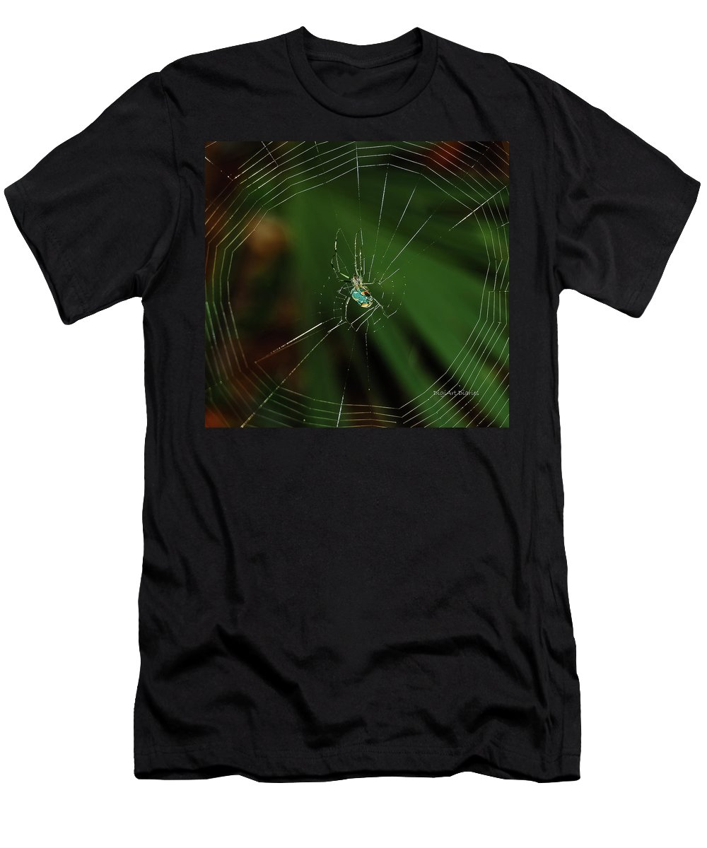 Spider Men's T-Shirt (Athletic Fit) featuring the photograph Orchard Orb by DigiArt Diaries by Vicky B Fuller