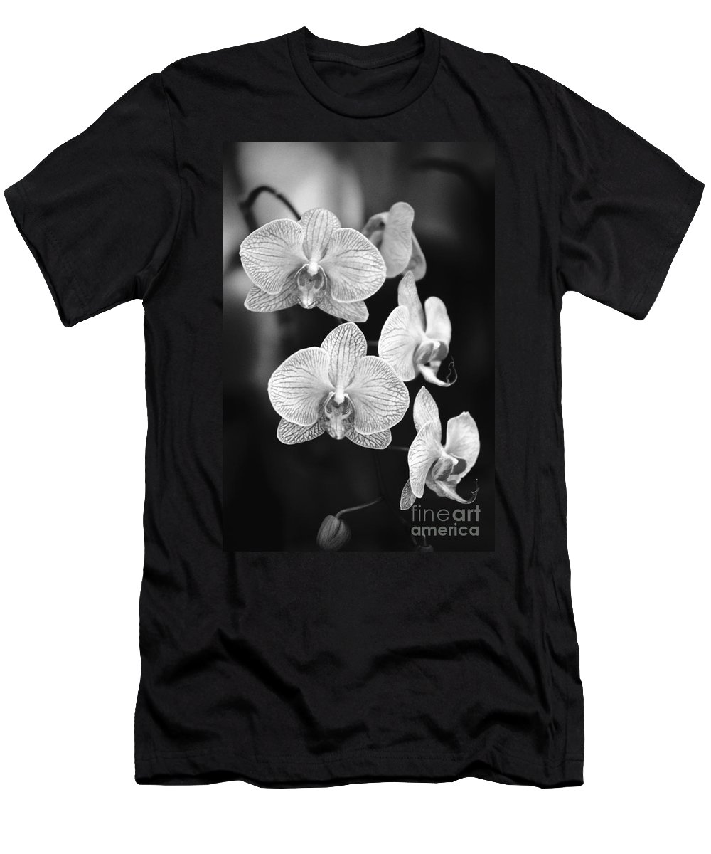 26-csm0095 Men's T-Shirt (Athletic Fit) featuring the photograph Orchid Cluster Close-up by Allan Seiden - Printscapes