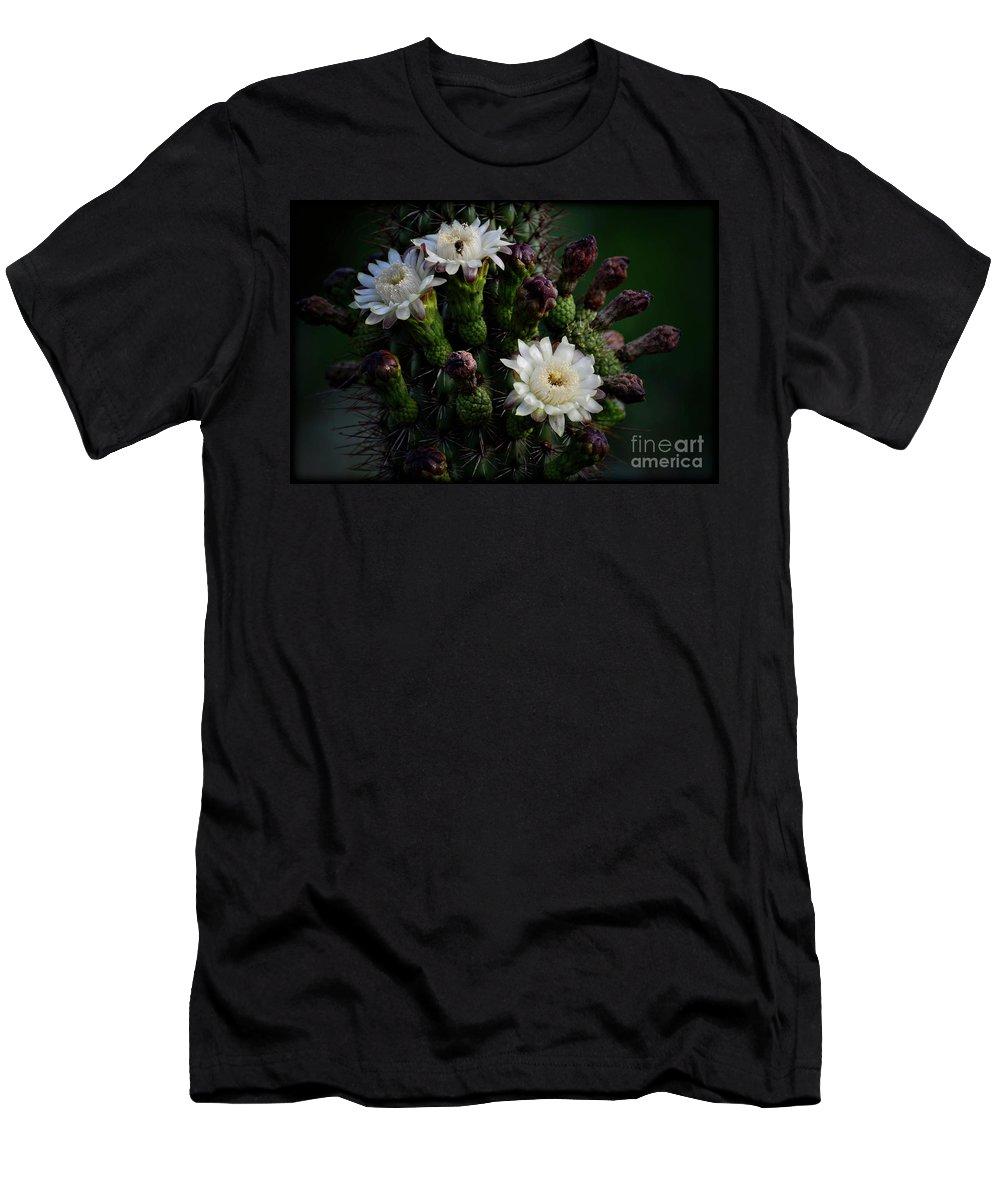 Organ Pipe Cactus Flowers Men's T-Shirt (Athletic Fit) featuring the photograph Organ Pipe Cactus Flowers by Saija Lehtonen