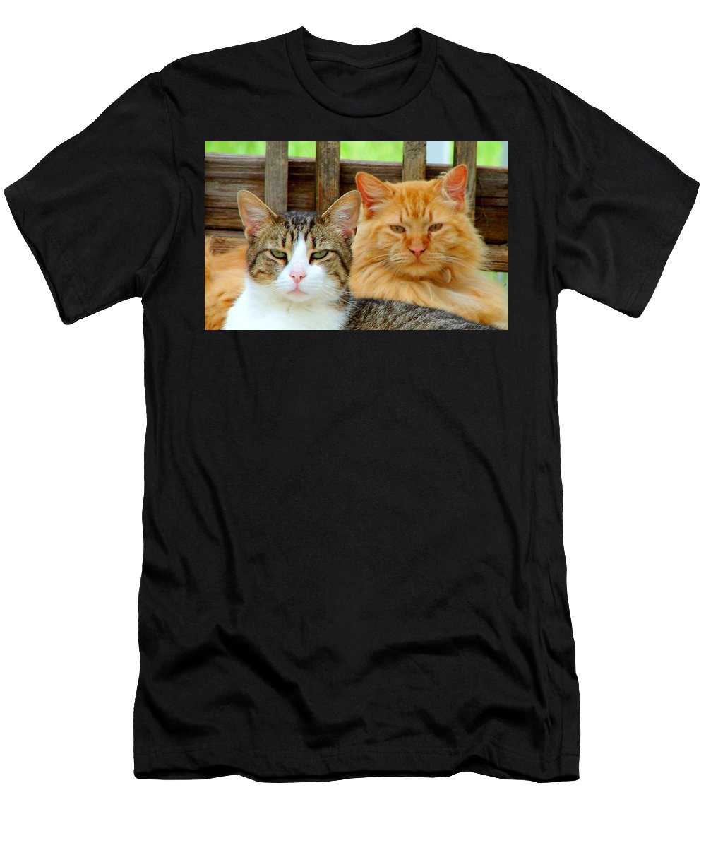 Cats Men's T-Shirt (Athletic Fit) featuring the photograph Oscar And Red by J R Seymour