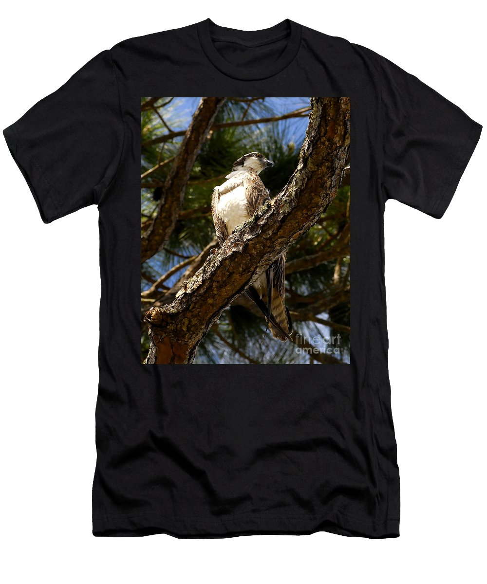 Osprey Men's T-Shirt (Athletic Fit) featuring the photograph Osprey Hunting by David Lee Thompson