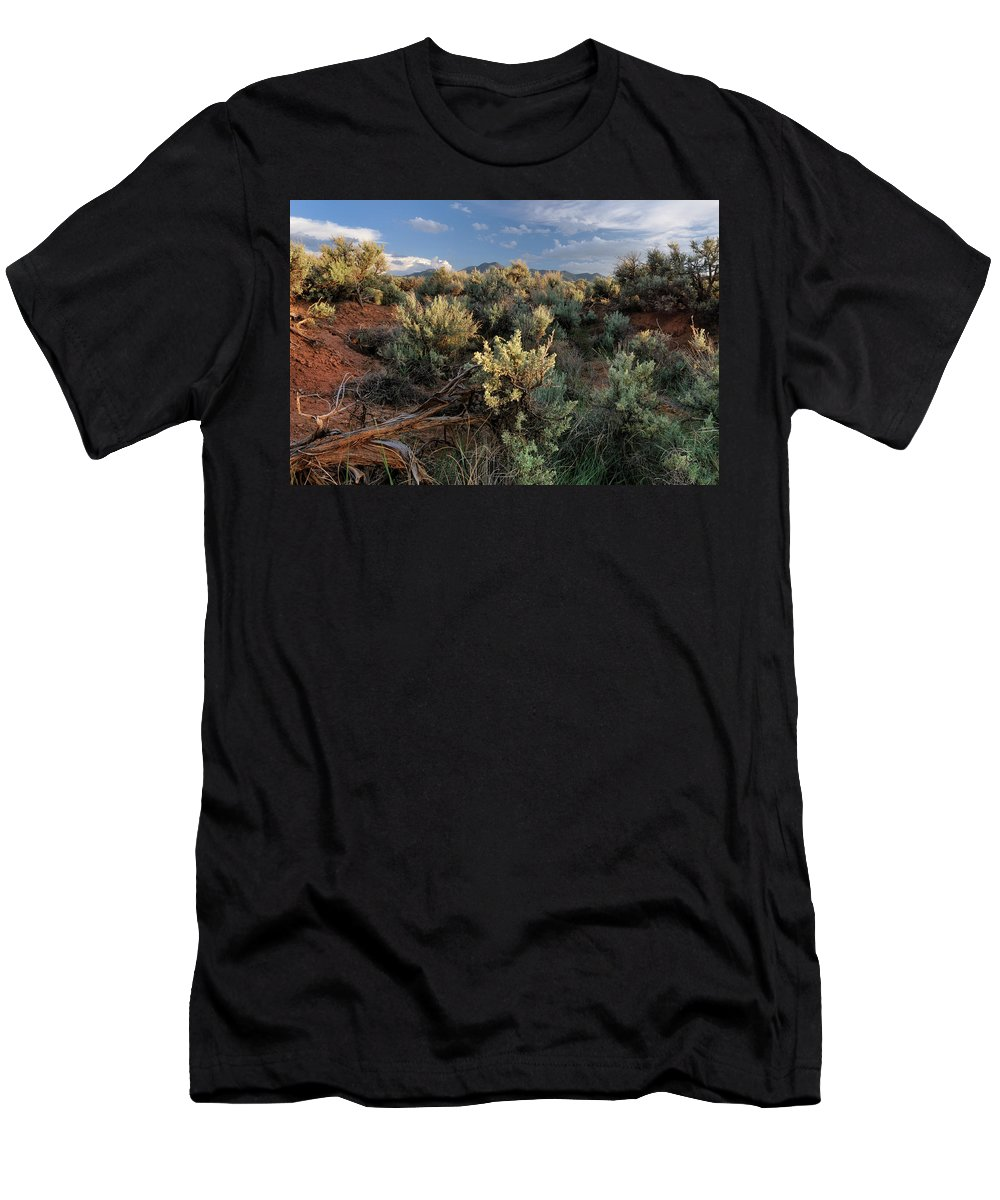 Landscape Men's T-Shirt (Athletic Fit) featuring the photograph Out On The Mesa 7 by Ron Cline