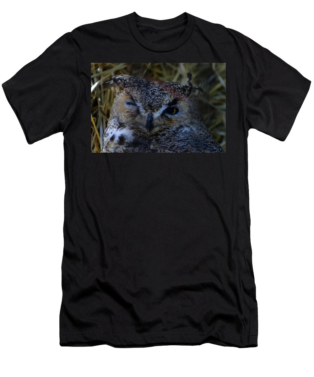 Owl Men's T-Shirt (Athletic Fit) featuring the photograph Owl by Anthony Jones