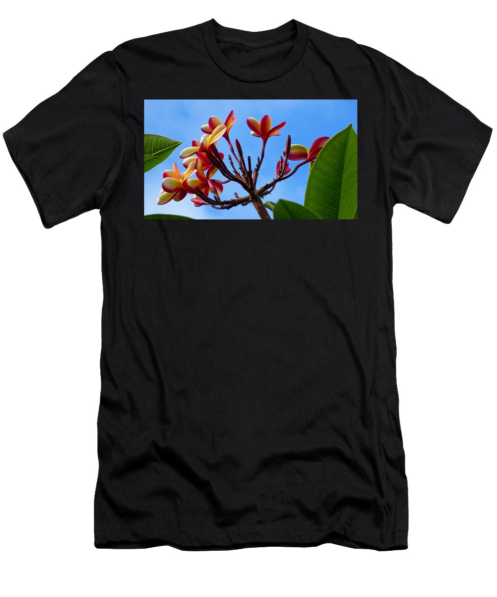 Hawaii Men's T-Shirt (Athletic Fit) featuring the photograph P1060054 by Robert Abbett