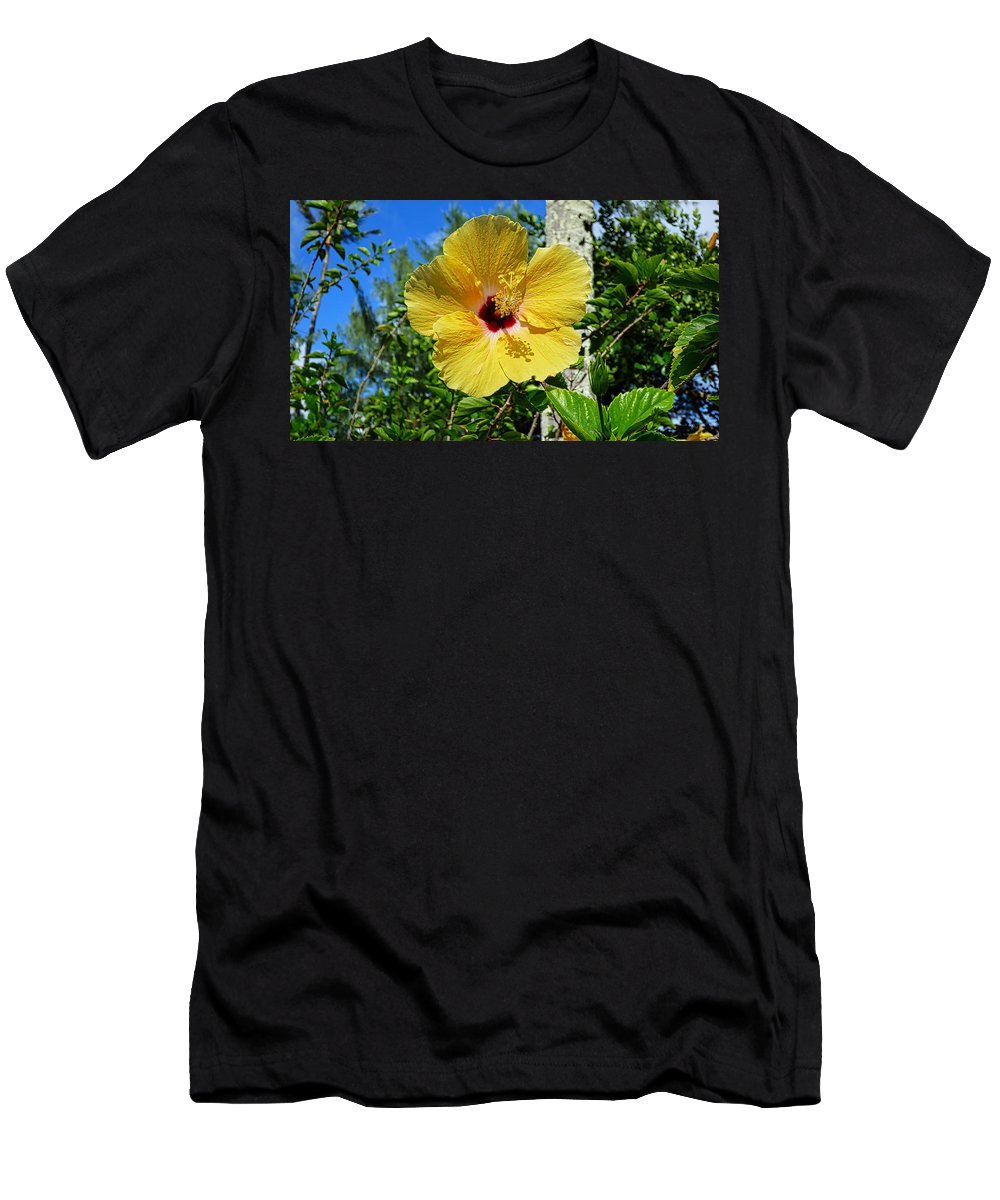 Hawaii Men's T-Shirt (Athletic Fit) featuring the photograph P1060060 by Robert Abbett