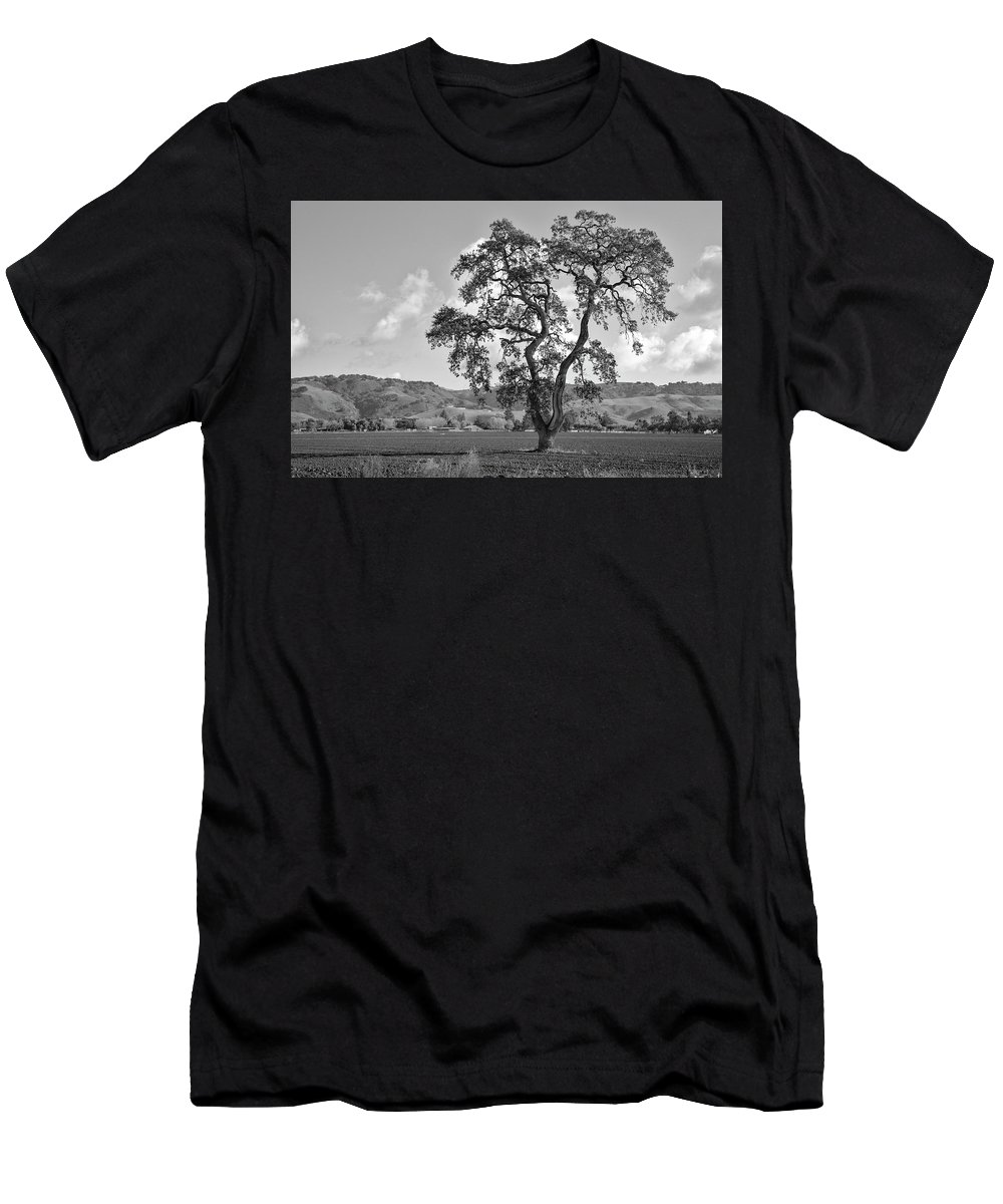 California Men's T-Shirt (Athletic Fit) featuring the photograph Pacheco Pass by Sonny Marcyan