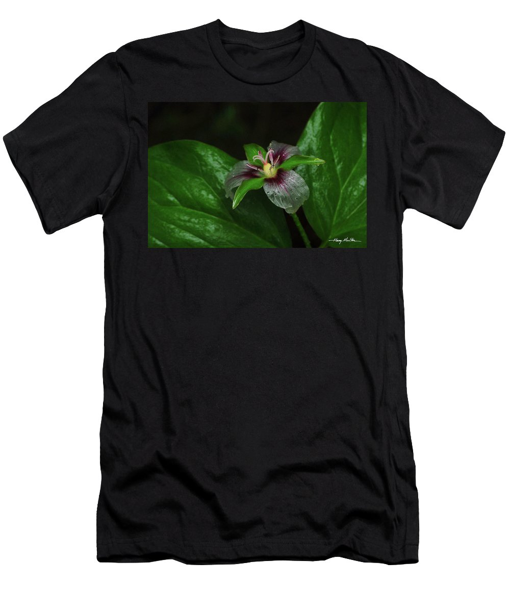 Flower Men's T-Shirt (Athletic Fit) featuring the photograph Painted Trillium In The Rain by Harry Moulton