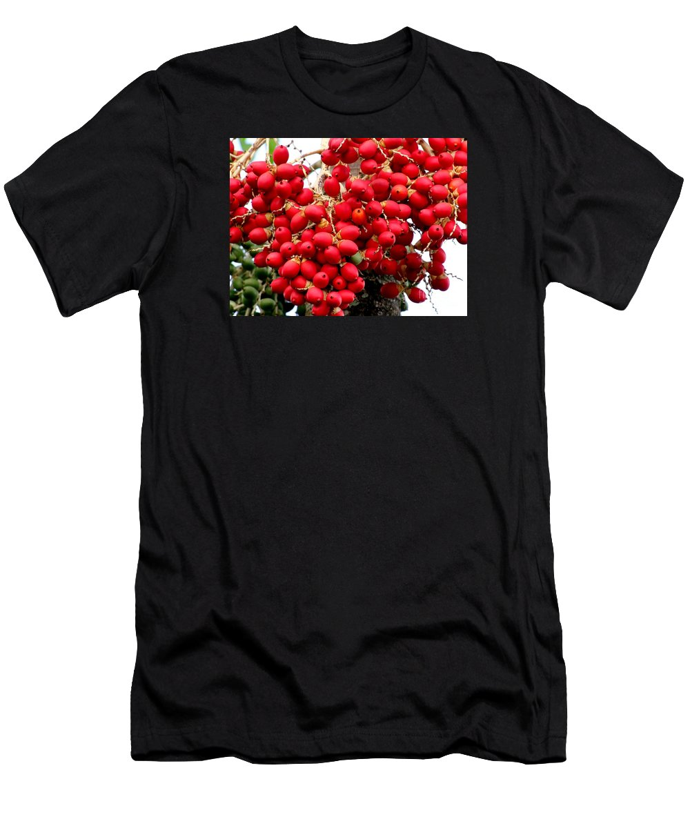 Palm Trees Men's T-Shirt (Athletic Fit) featuring the photograph Palm Tree Seeds by Mary Deal