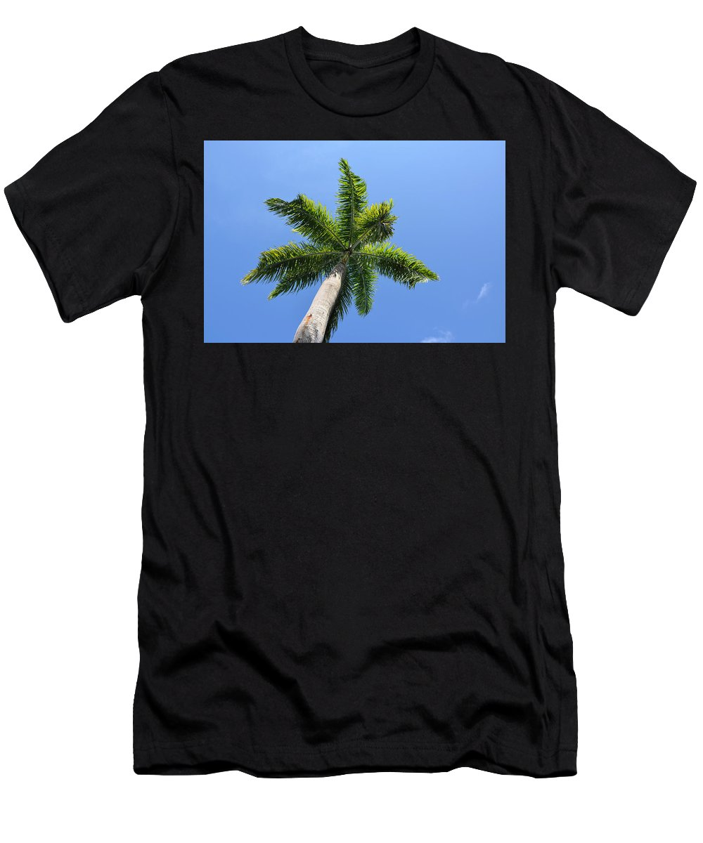 Blue Men's T-Shirt (Athletic Fit) featuring the photograph Palm Tree by Timothy Markley