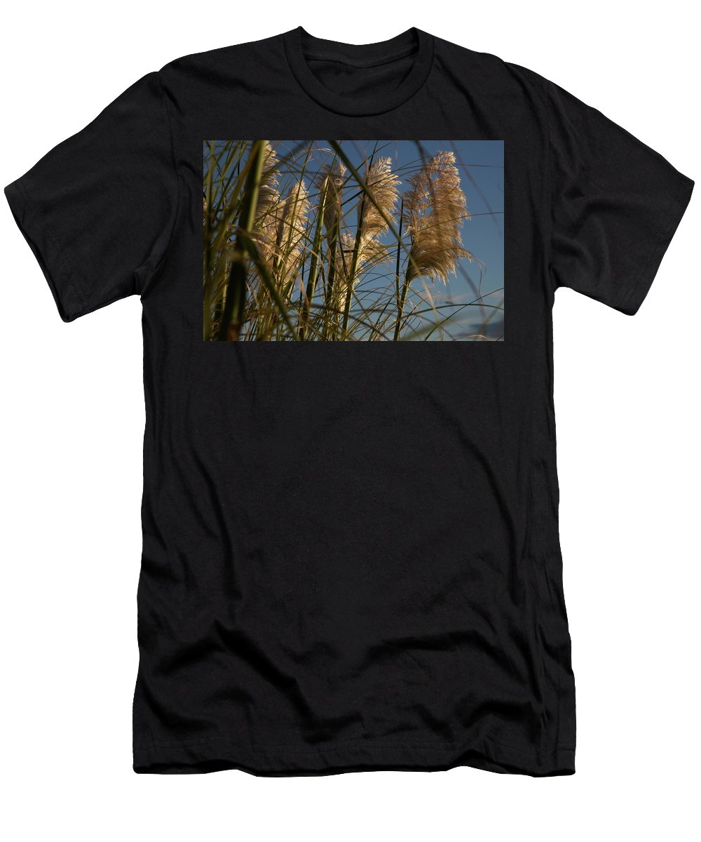 Beach Men's T-Shirt (Athletic Fit) featuring the photograph Pampas Grass At Sunset by Paul Kukuk