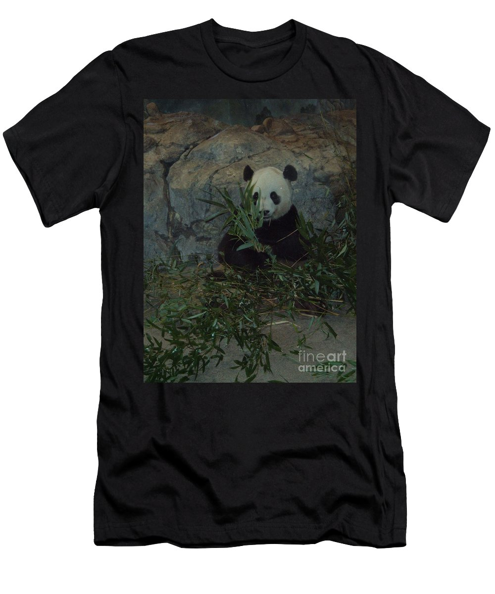 Panda Men's T-Shirt (Athletic Fit) featuring the photograph Panda Lunch by Jost Houk