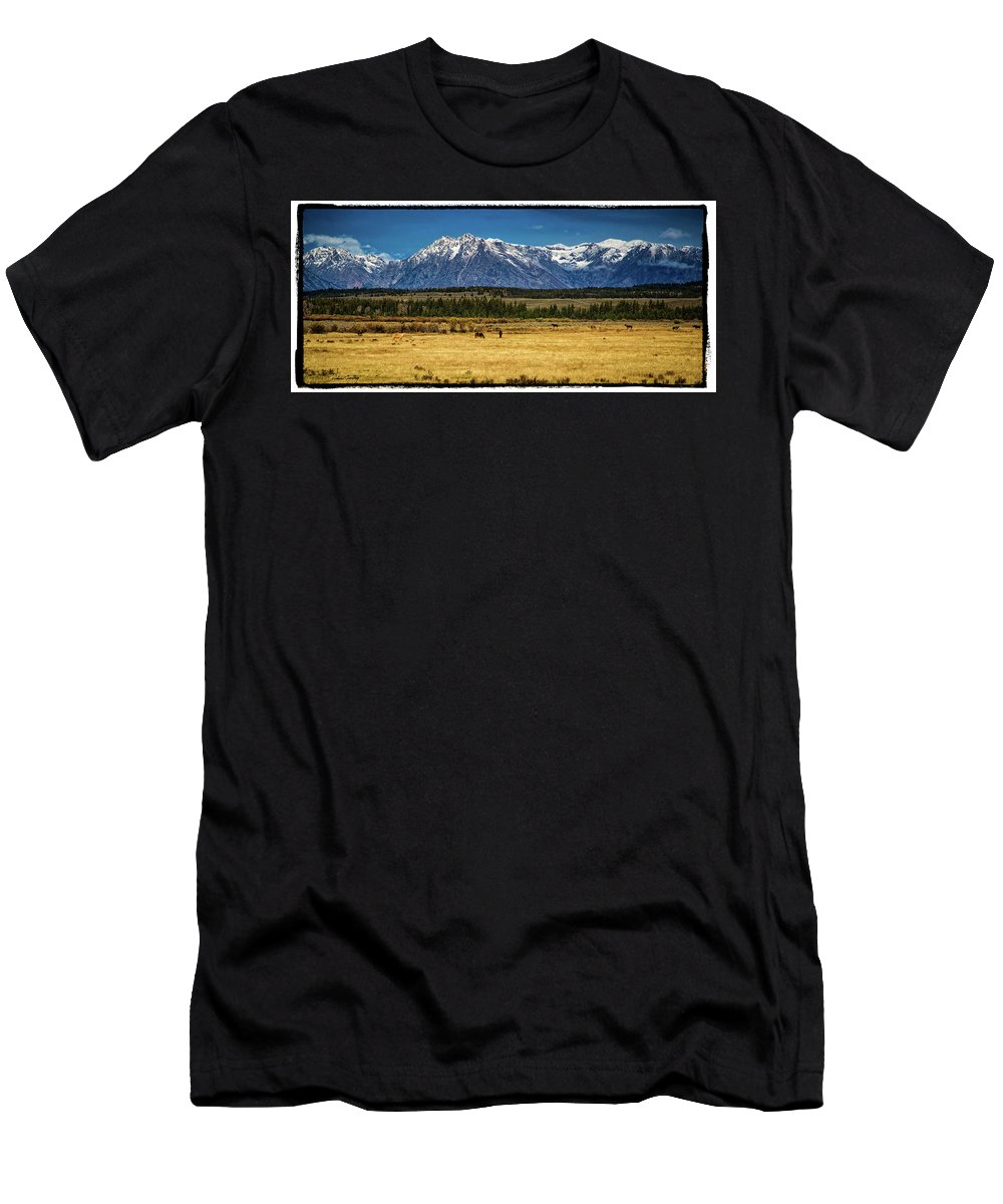 Grand Tetons Men's T-Shirt (Athletic Fit) featuring the photograph Peaceful Valley by Richard Cronberg