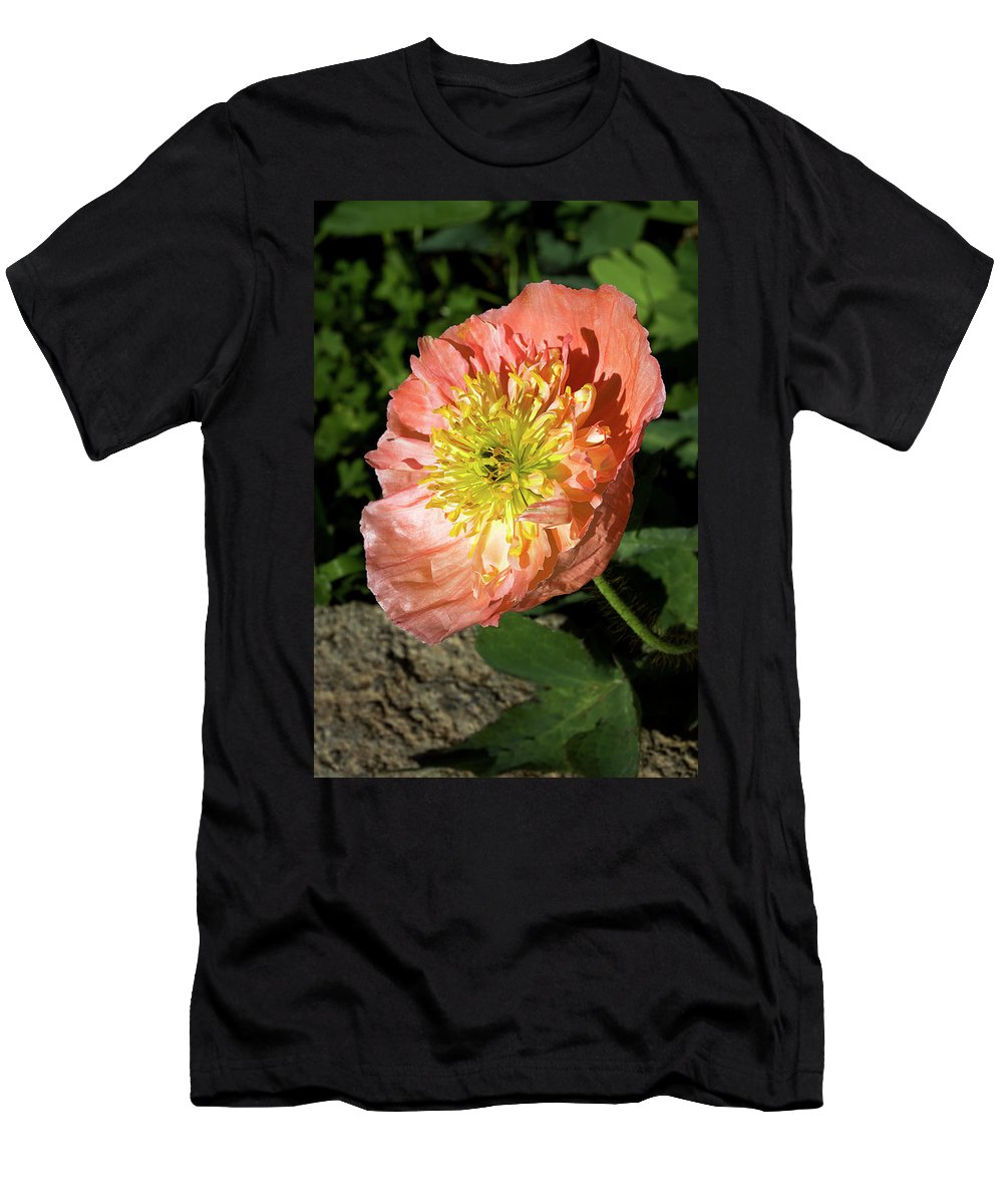 Poppy Men's T-Shirt (Athletic Fit) featuring the photograph Peach Colored Poppy by Phyllis Denton
