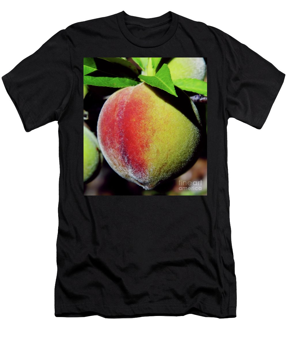 Peach Men's T-Shirt (Athletic Fit) featuring the photograph Peach Fuzz by D Hackett