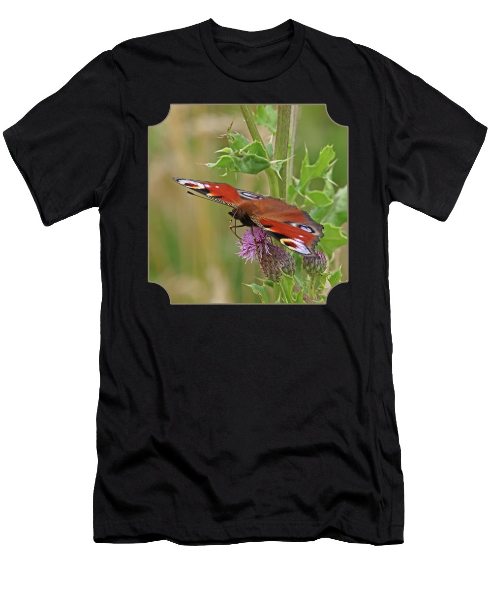 Butterfly Men's T-Shirt (Athletic Fit) featuring the photograph Peacock Butterfly On Thistle Square by Gill Billington