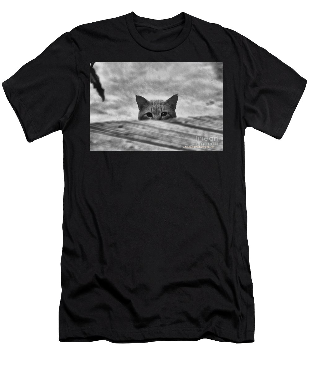 Cat Men's T-Shirt (Athletic Fit) featuring the photograph Peek A Boo by Carole Martinez