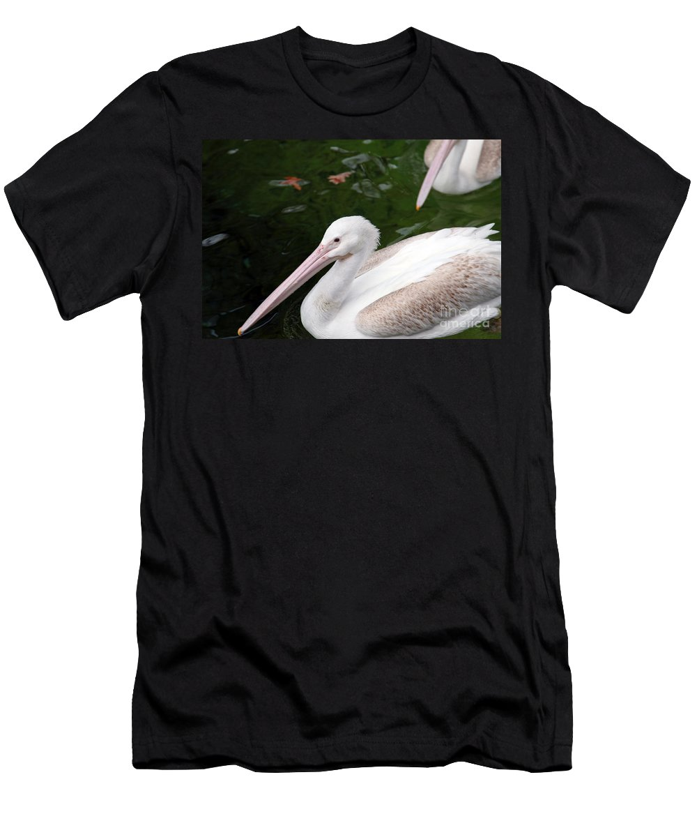 Pelican Men's T-Shirt (Athletic Fit) featuring the photograph Pelican by Amanda Barcon