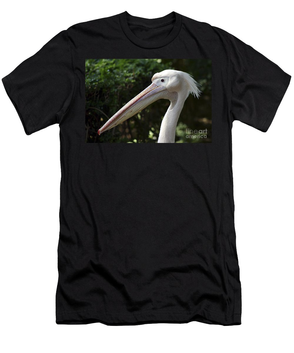 Close Up Men's T-Shirt (Athletic Fit) featuring the photograph Pelican by Danny Yanai