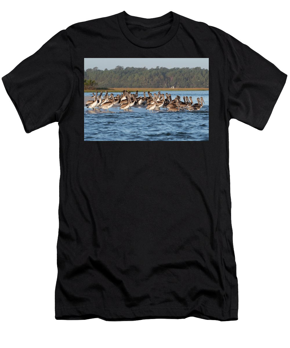 Pelican Men's T-Shirt (Athletic Fit) featuring the photograph Pelicans, Murrells Inlet Sc by George DeCamp