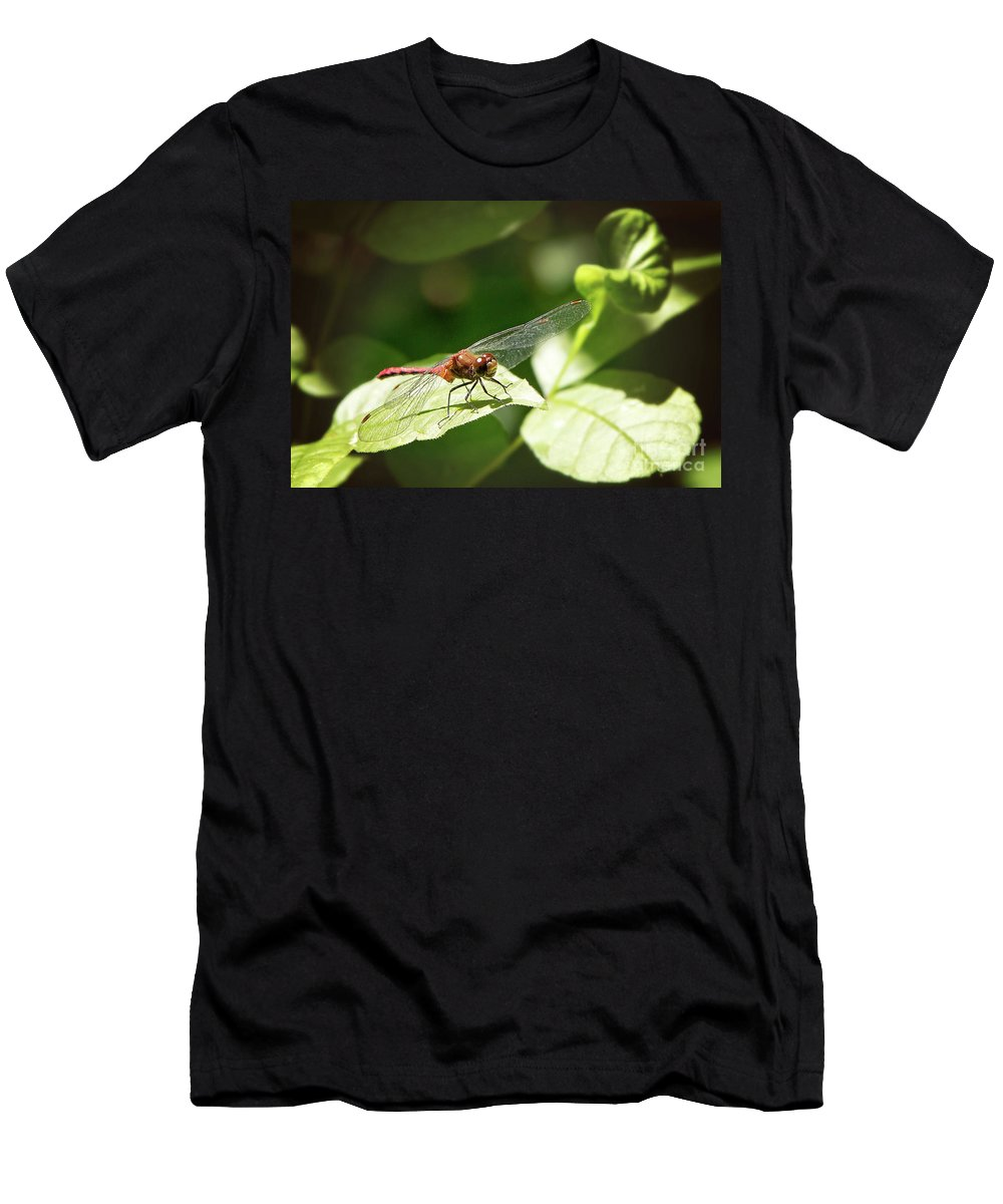 Nature Men's T-Shirt (Athletic Fit) featuring the photograph Perched Dragonfly by Sharon McConnell