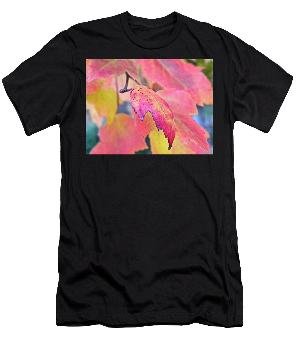 Fall Men's T-Shirt (Athletic Fit) featuring the photograph A Sign Of Fall by Shannon Turek