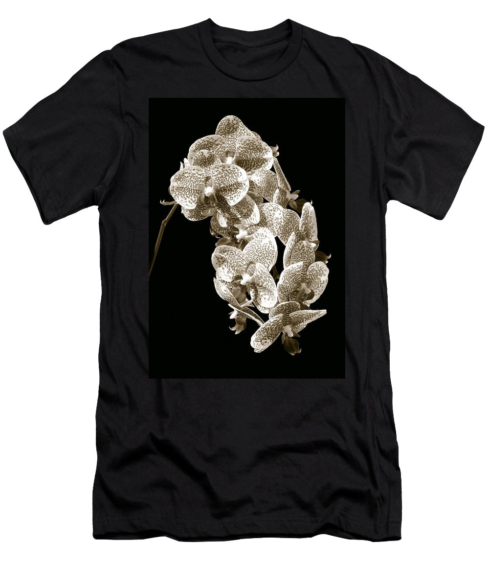 Phalaenopsis Men's T-Shirt (Athletic Fit) featuring the photograph Phalaenopsis by Steven Sparks