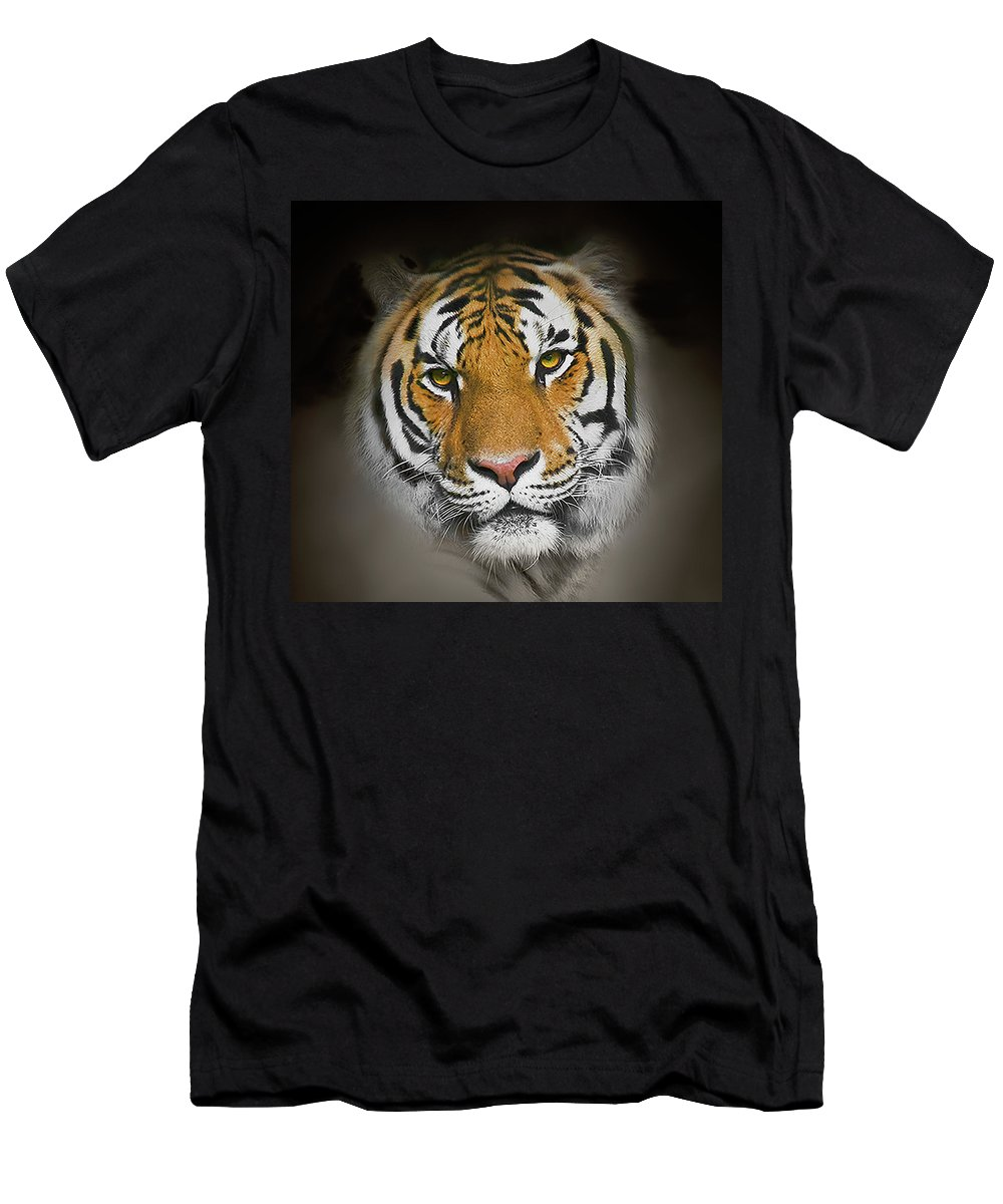 Tiger Men's T-Shirt (Athletic Fit) featuring the photograph Piercing by John Christopher