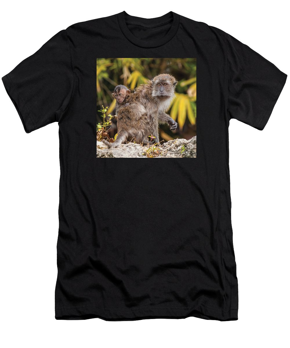 Java Monkey Men's T-Shirt (Athletic Fit) featuring the photograph Piggy Back Ride by William Bitman