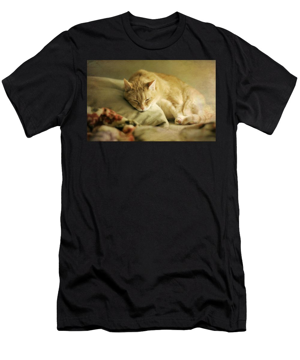 Cat Men's T-Shirt (Athletic Fit) featuring the photograph Pillow Talk by Diana Angstadt