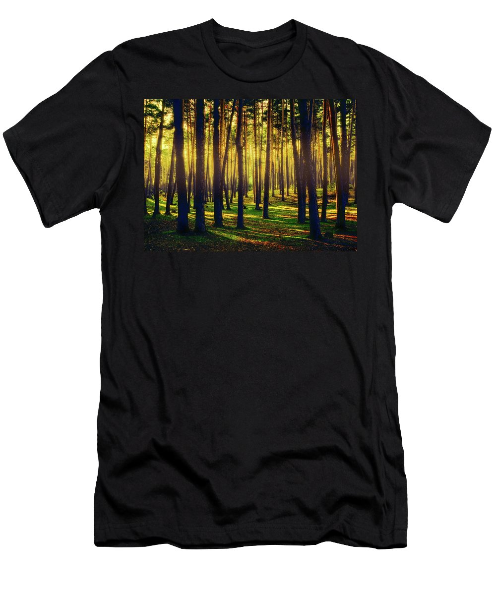 Beautiful Men's T-Shirt (Athletic Fit) featuring the photograph Pine Forest In La Boca Del Asno-segovia-spain by Hans Schrodter