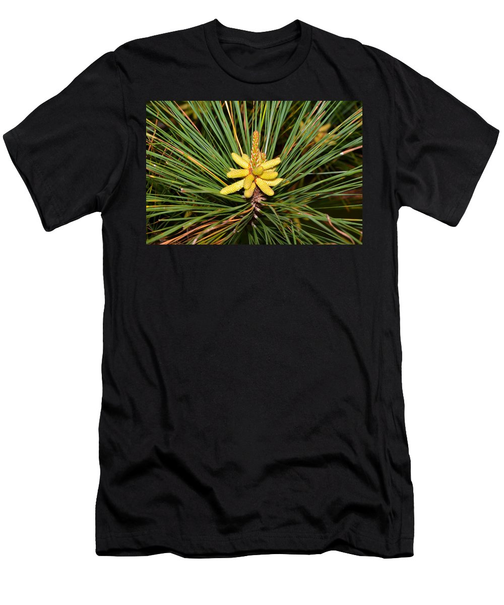 Loblolly Men's T-Shirt (Athletic Fit) featuring the photograph Pine In Bloom by Royal Tyler
