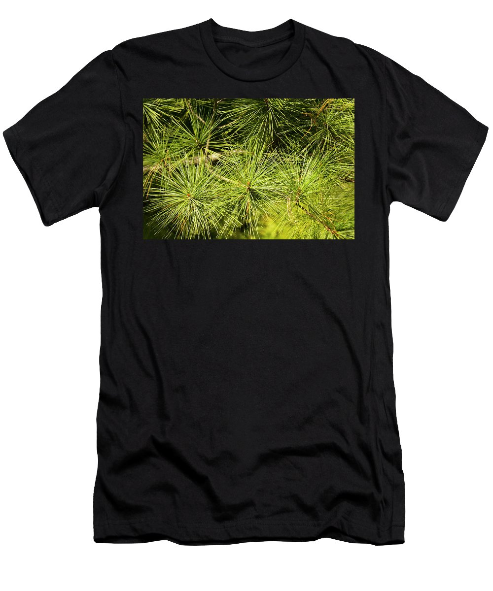 Pine Men's T-Shirt (Athletic Fit) featuring the photograph Pine Needles by Brian Kenney