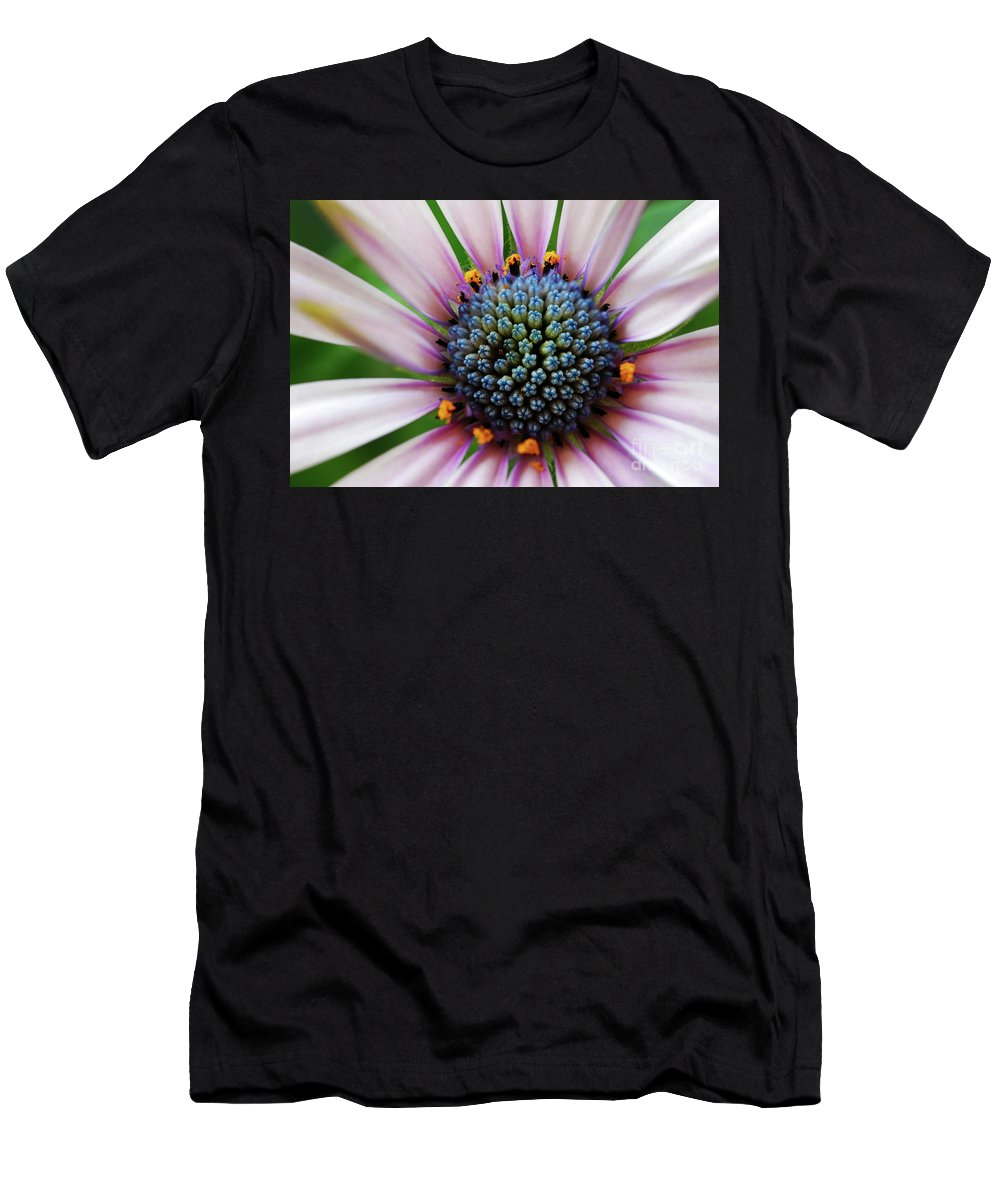 Daisy Men's T-Shirt (Athletic Fit) featuring the photograph Pink African Daisy Detail by Nancy Mueller