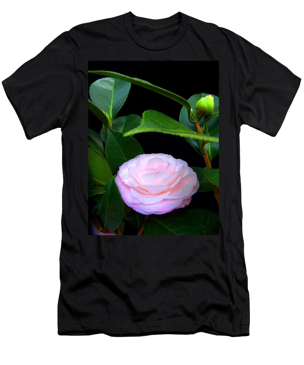 Camelia Men's T-Shirt (Athletic Fit) featuring the photograph Pink Camelia by Laurie Paci