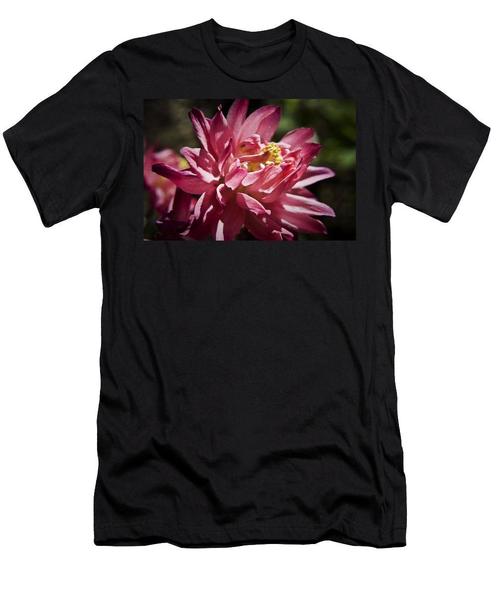 Columbine Men's T-Shirt (Athletic Fit) featuring the photograph Pink Columbine by Teresa Mucha