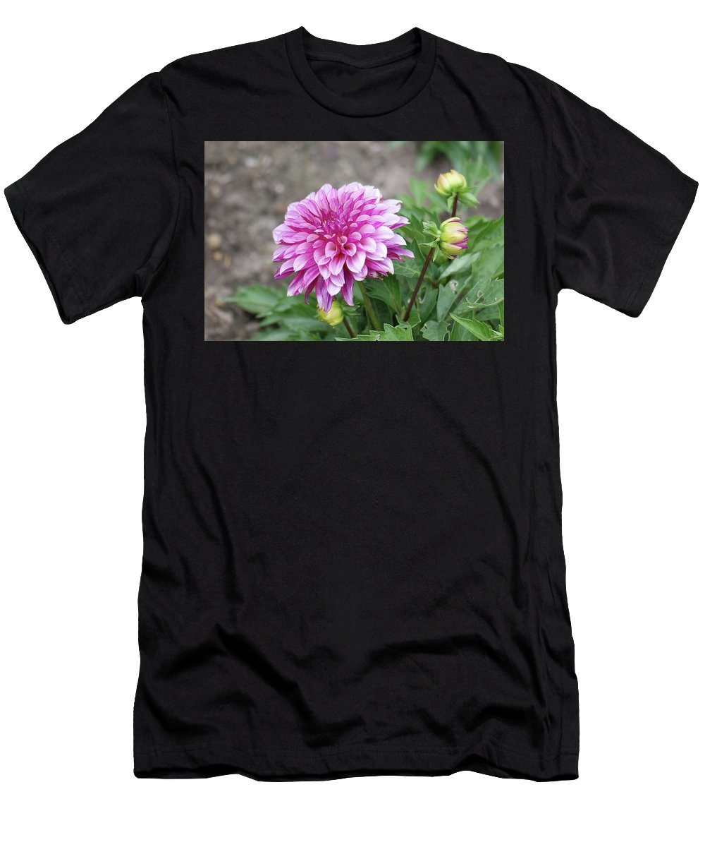 Flowers Men's T-Shirt (Athletic Fit) featuring the photograph Pink Dahlia 2 by Nancy Aurand-Humpf