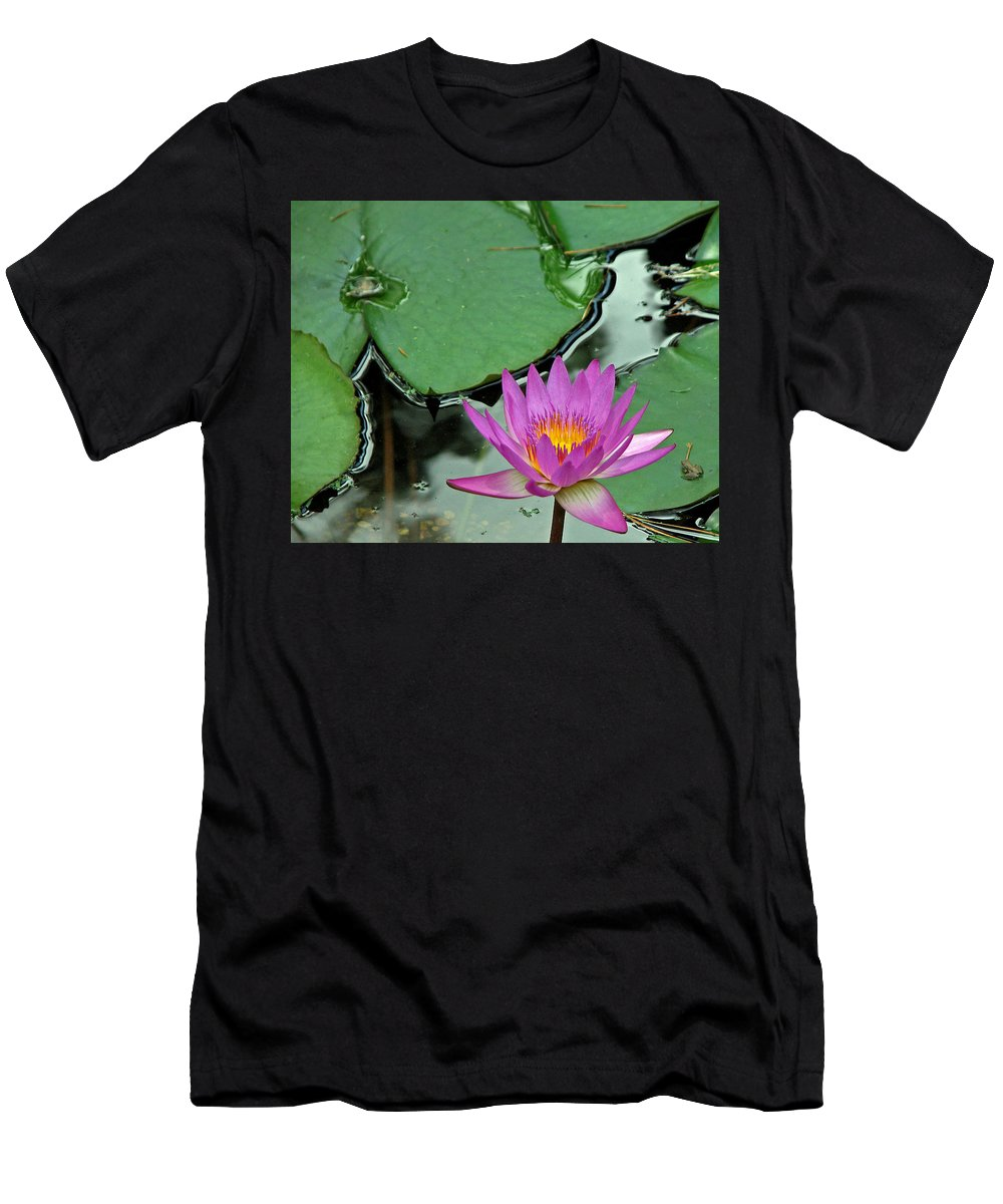 Amphibian Men's T-Shirt (Athletic Fit) featuring the photograph Pink Water Lily by Judy Vincent