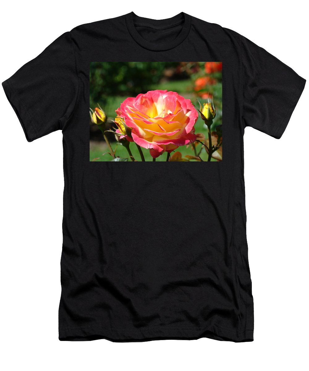 Rose Men's T-Shirt (Athletic Fit) featuring the photograph Pink Yellow Roses 3 Summer Rose Garden Giclee Art Prints Baslee Troutman by Baslee Troutman