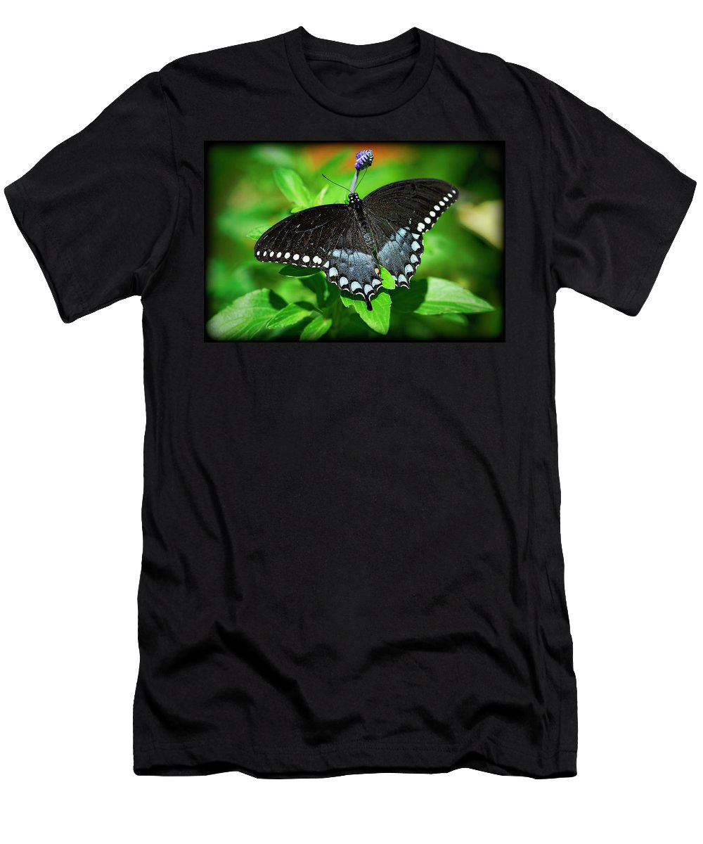 Pipevine Swallowtail Butterfly Men's T-Shirt (Athletic Fit) featuring the photograph Pipevine Swallowtail Butterfly by Saija Lehtonen