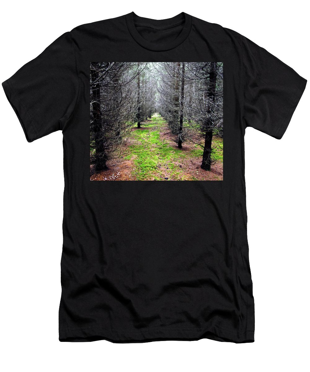 Spruce Men's T-Shirt (Athletic Fit) featuring the photograph Planted Spruce Forest by Jarmo Honkanen