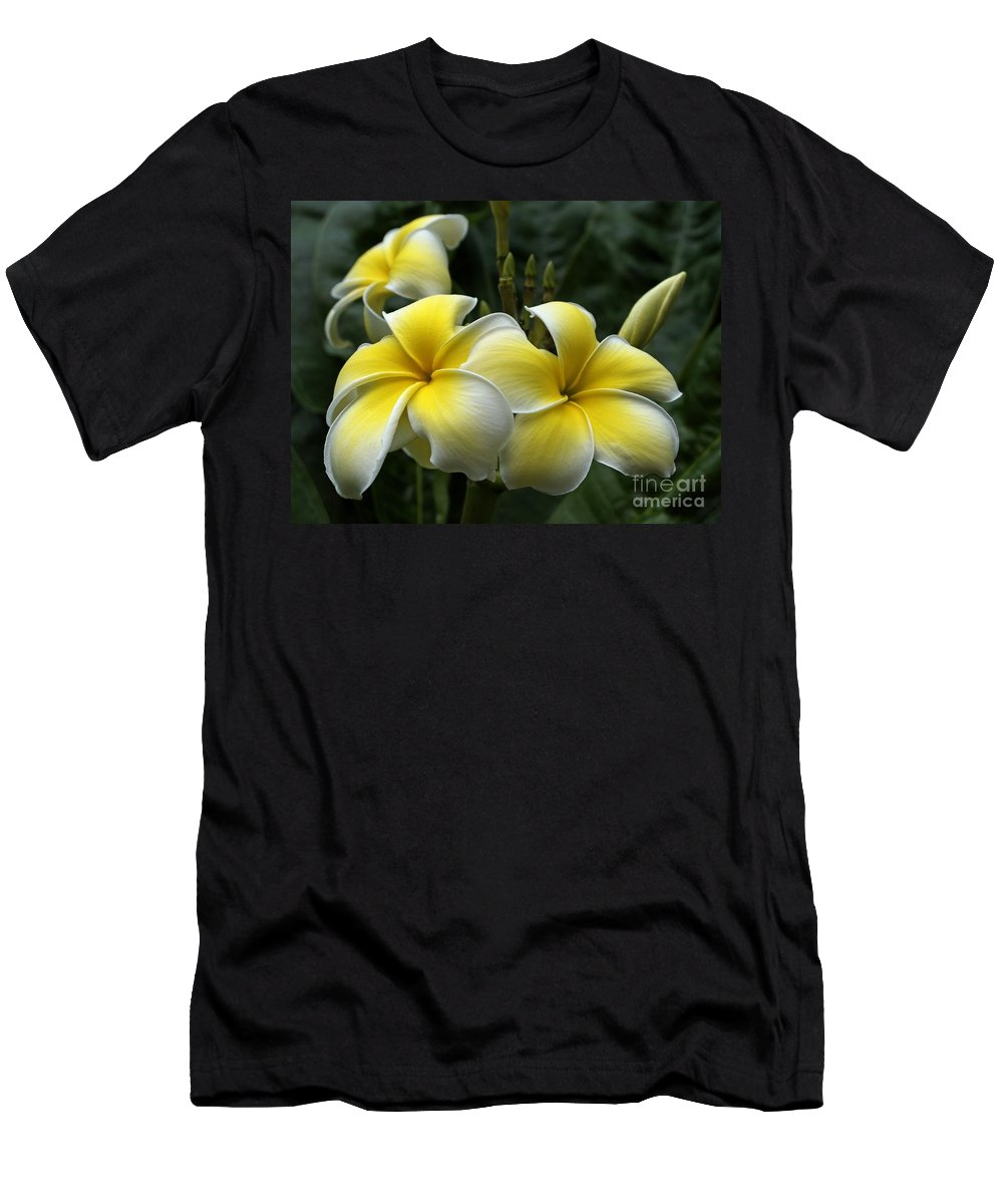 Plumeria Men's T-Shirt (Athletic Fit) featuring the photograph Plumeria by Ann Horn