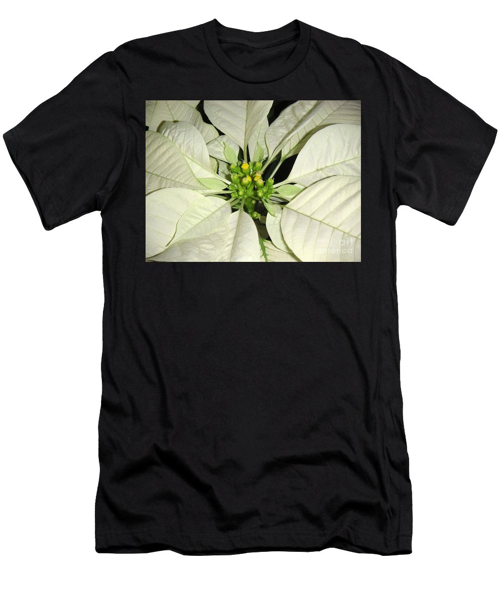 Nature Men's T-Shirt (Athletic Fit) featuring the photograph Poinsettias - Winter White Center by Lucyna A M Green