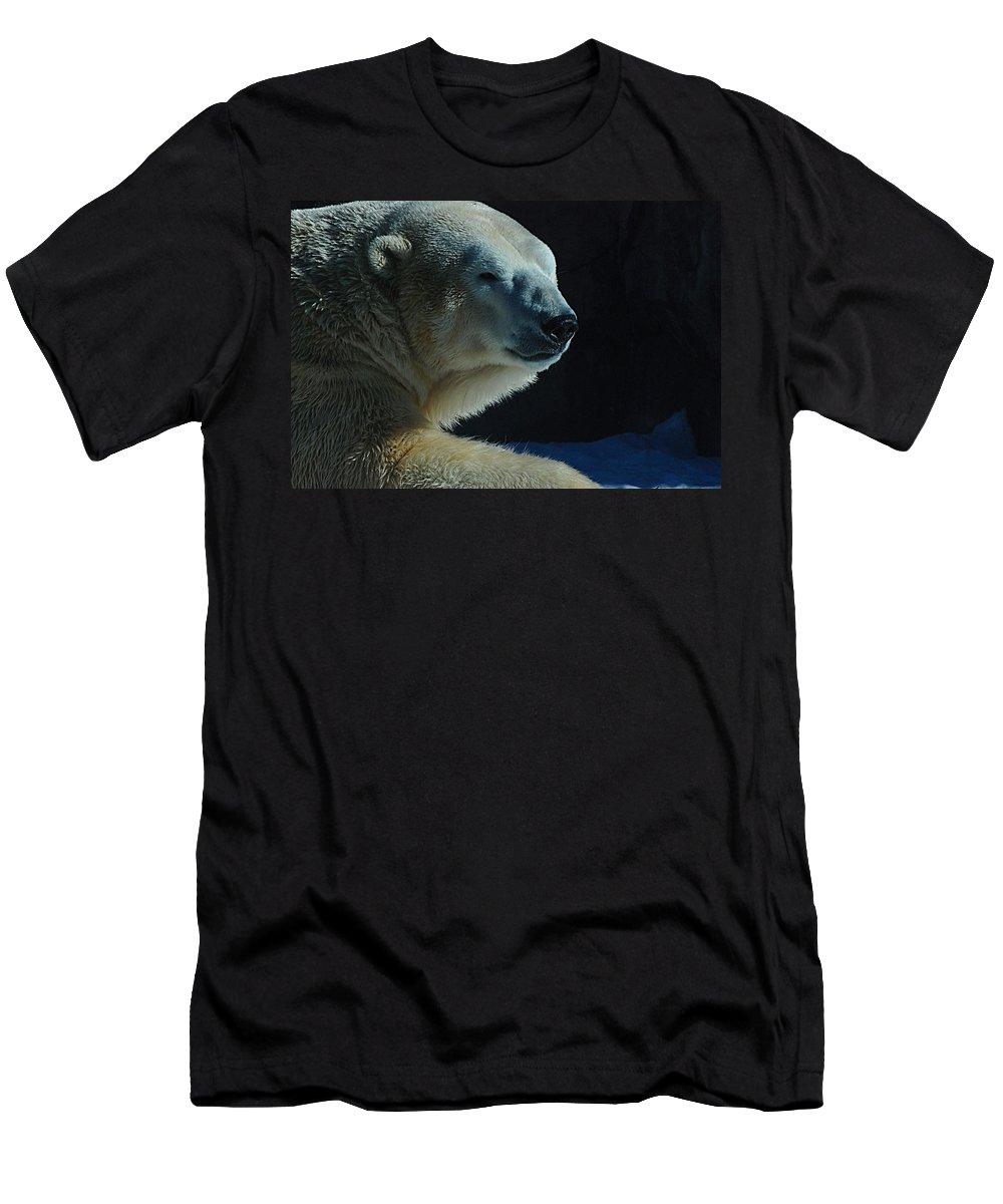 Polar Bear White Snow Alaska Zoo Men's T-Shirt (Athletic Fit) featuring the photograph Polar Bear by Galeria Trompiz