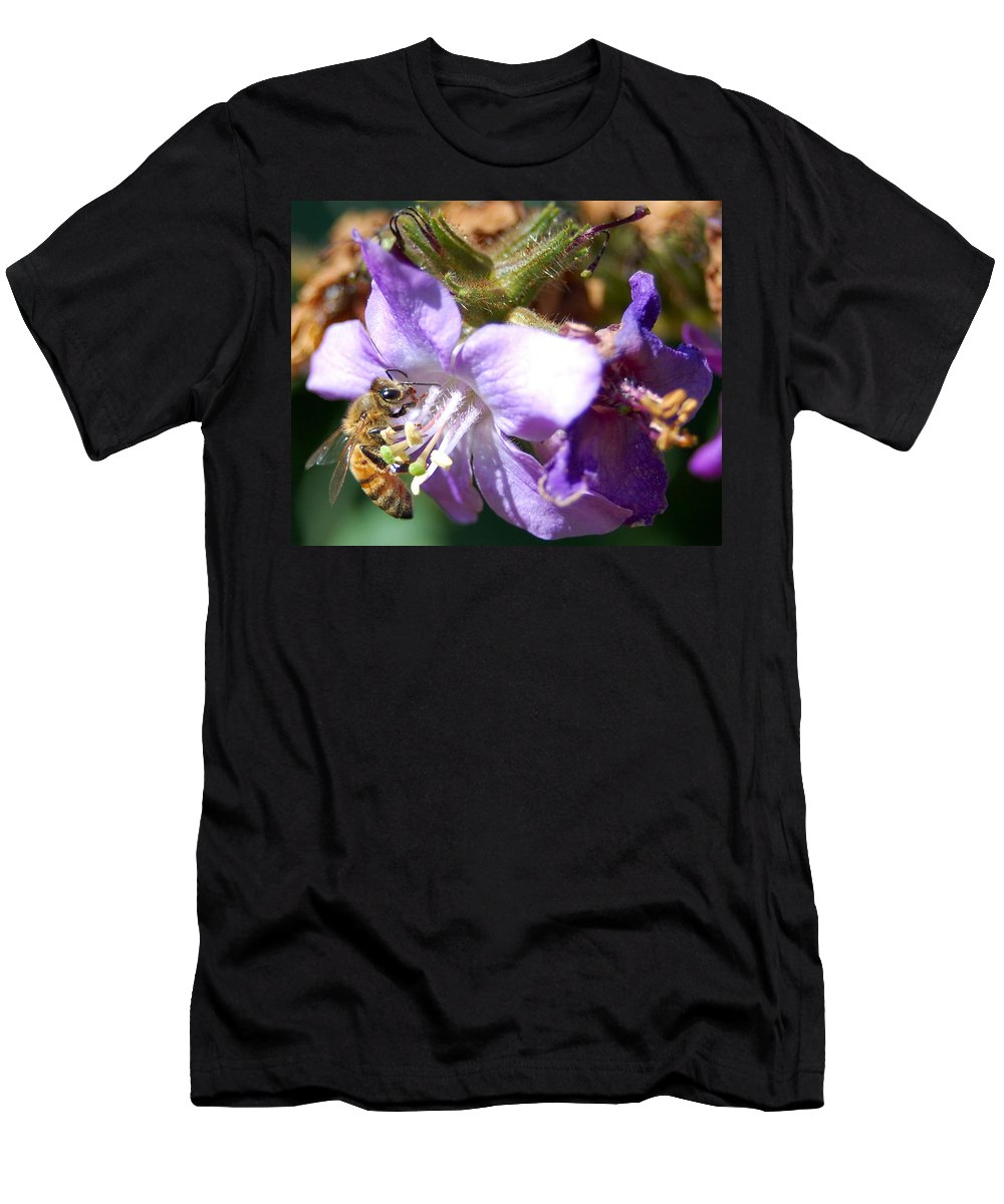 Bee Men's T-Shirt (Athletic Fit) featuring the photograph Pollinating 1 by Amy Fose