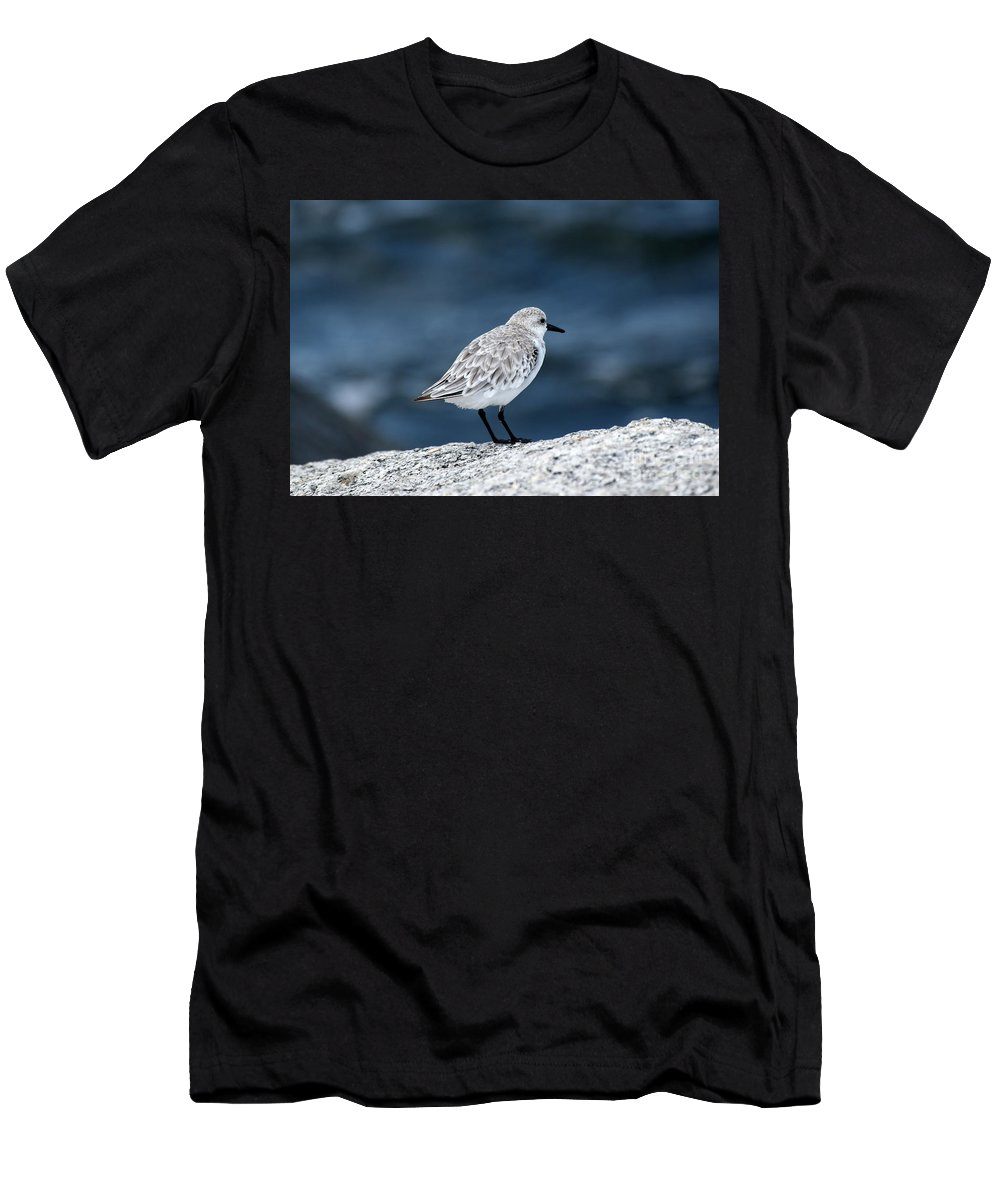 Bird Men's T-Shirt (Athletic Fit) featuring the photograph Pondering The Storm by William Tasker