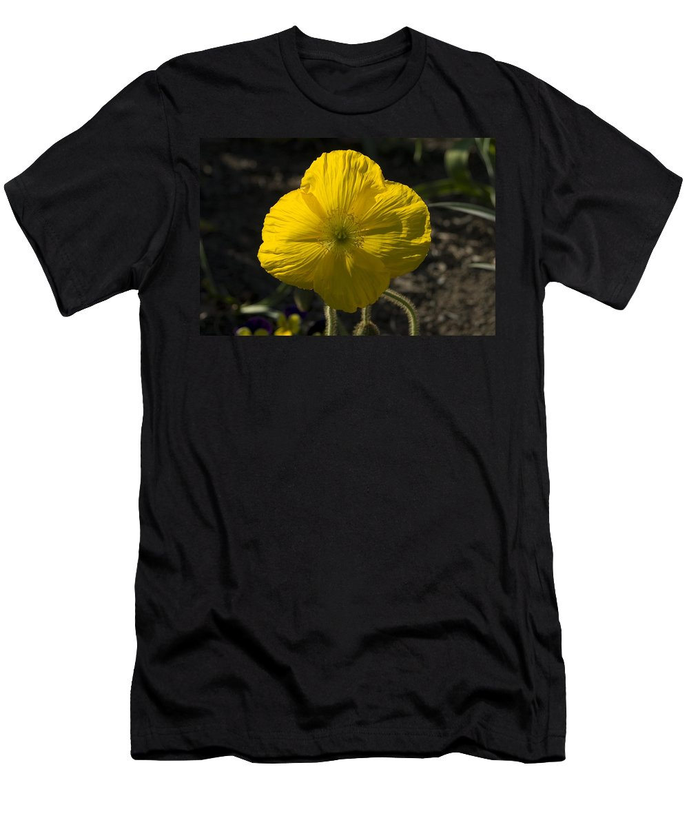 Flowers Men's T-Shirt (Athletic Fit) featuring the photograph Poppies 2 by Sara Stevenson